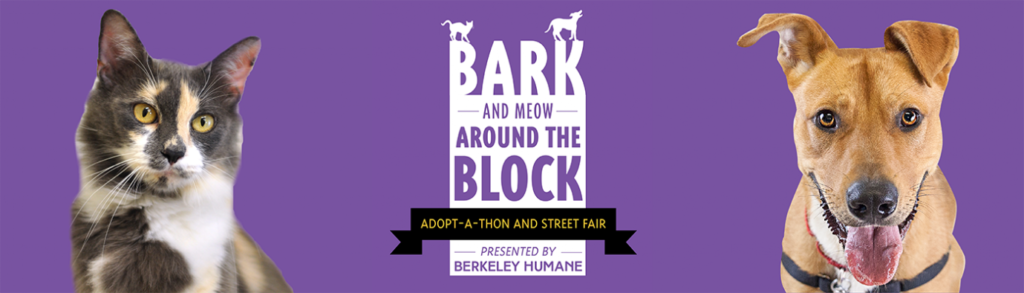 Bark (& Meow) Around the Block logo with dog and cat