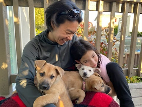 Become a Berkeley Humane foster