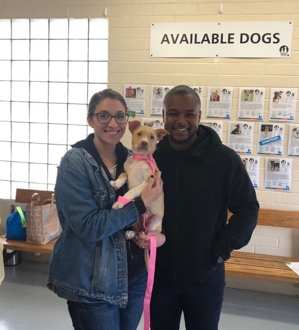 Luna's adoption day!