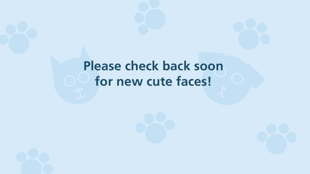 graphic indicating to check back soon for cute faces