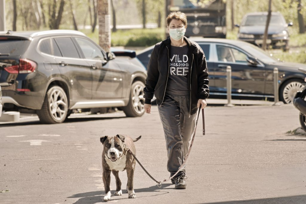 Masked person walking dog