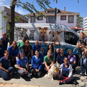 Berkeley Humane serves the people and animals of our community by providing life-saving programs for cats and dogs, strengthening the human-animal bond.