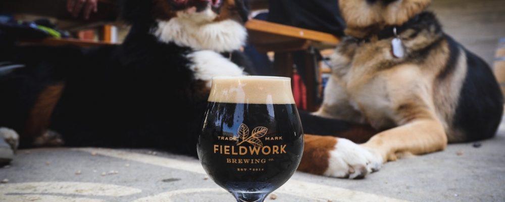p4p Brewery dog_Fieldwork6